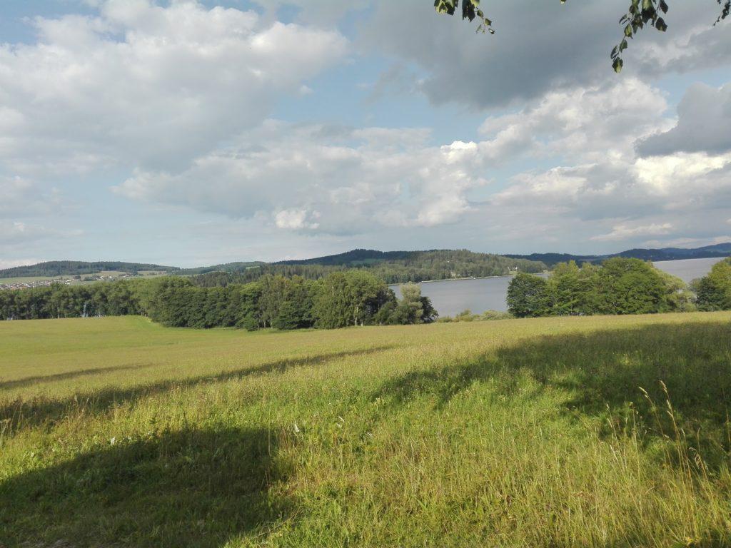 Landschaft mit Lipnostausee